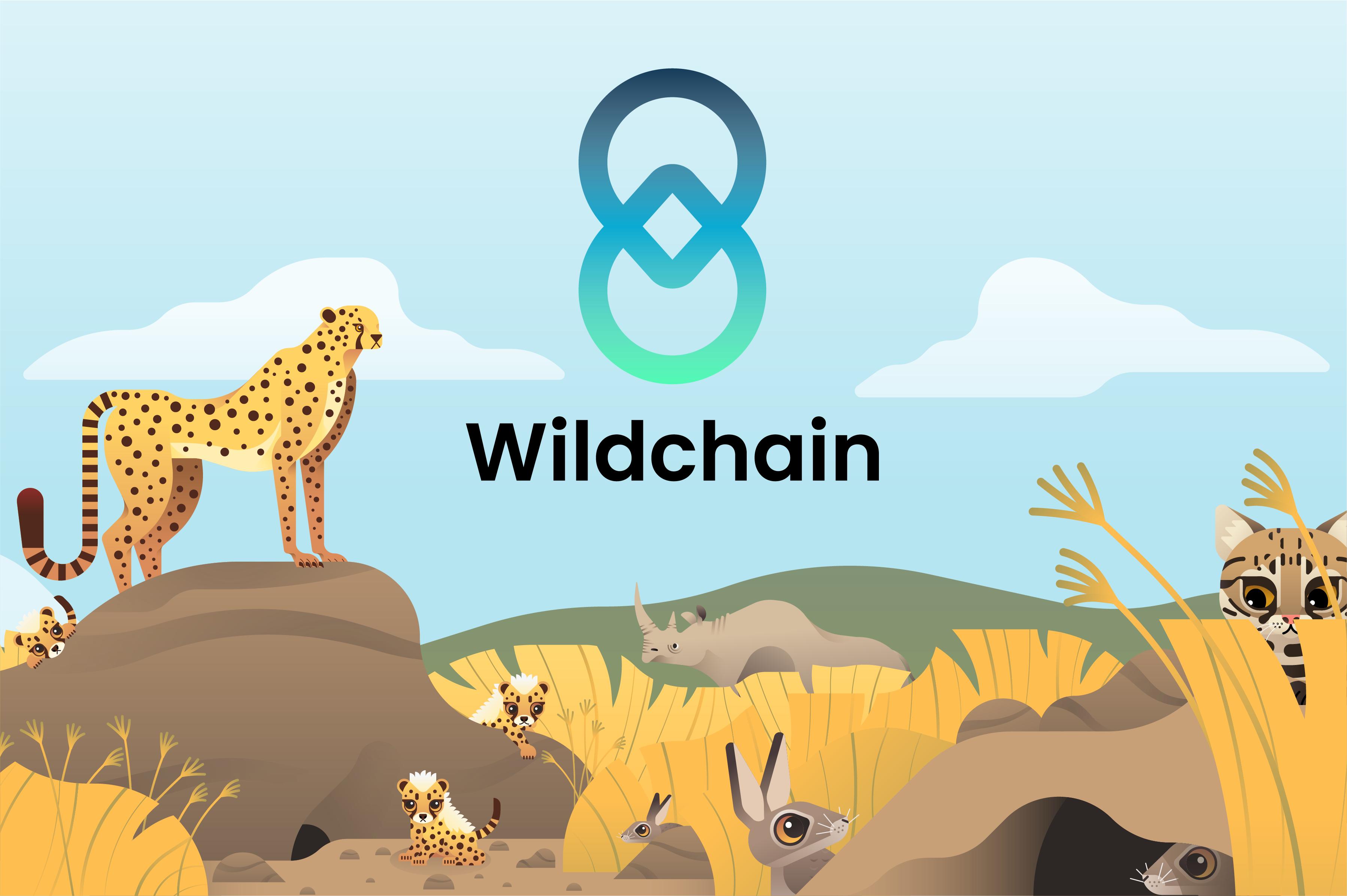 Wildchain แพลตฟอร์มดิจิตอลเพื่อการอนุรักษ์และเลี้ยงดูสัตว์ป่า